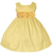 Baby-Girls New Sweet Kids Flower Girl Sleeveless Dress with Rolled Flower Waistband