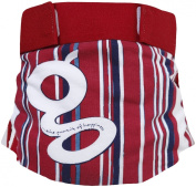 gDiapers gPants Grandstand Cloth Nappy Cover