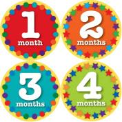Sticky Bellies Baby Onesie Monthly Milestone Stickers