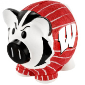 NCAA Wisconsin Badgers Resin Large Thematic Piggy Bank
