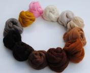 Merino Wool tops Toy Box Mix