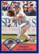 2003 Topps Montreal Expos Baseball Cards Complete Team Set 17 cards