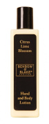 Benbow and Blake Citrus Lime Blossom Hand and Body Lotion