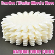 Display / Practise Wheel (Natural Ivory,Oval) x 10 CODE
