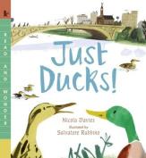 Just Ducks! (Read and Wonder