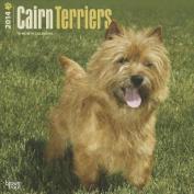 Cairn Terriers 2014 Wall Calendar