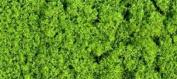Gaugemaster Light Green Foliage