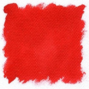Dylon Fabric Paint - Red 6