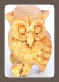 Sound owl , hooting owl