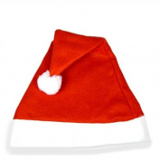 Santa Felt Hat (one supplied)