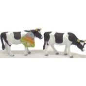 Two Friesian Cattle