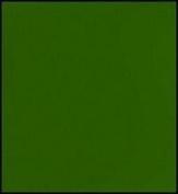 Faber-Castell Polychromos Artist Coloured Pencils (Each) chrome green opaque 174