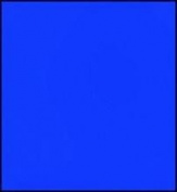 Faber-Castell Polychromos Artist Coloured Pencils (Each) cobalt blue greenish 144