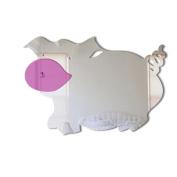 Mungai Mirrors 15cm Pig Acrylic Mirror