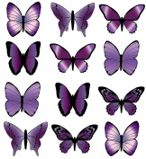 PRE-CUT LARGE PURPLE BUTTERFLY EDIBLE RICE / WAFER PAPER CUP CAKE TOPPERS BIRTHDAY PARTY WEDDING DECORATION B17