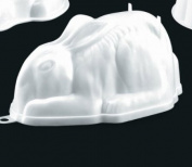Rabbit Jelly Moulds