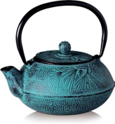 Peking Cast iron tea pot with stainless steel infuser