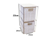 Woodluv 2 Drawer White Resin Tower Storage Unit