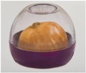 Progressive Onion Keeper