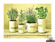 Premium Glass Chopping Board - Old English Herbs Design Kitchen Worktop Saver Protector