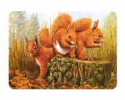 Premium Small Glass Chopping Board - Red Squirrel Kitchen Worktop Saver Protector