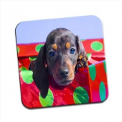Dachshund Dog Peering Out Of A Box Single Premium Glossy Wooden Coaster
