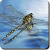 Dragonflies-Dragonfly Leather Coaster Christmas Gift, Ref:IDR-1SC