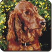 Irish Red Setter Dog Leather Coaster Christmas Gift, Ref:AD-RS1SC