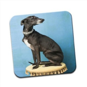 Whippet Dog Sitting On Drums Single Premium Glossy Wooden Coaster