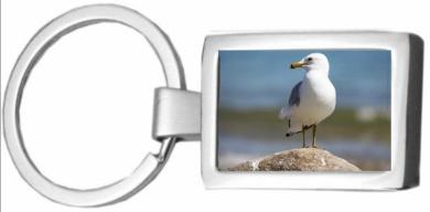 Seagull CHROME KEYRING 45