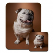 Bull Dog Sitting Premium Mousematt & Coaster Set