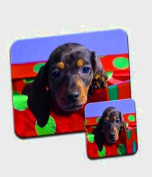 Dachshund Dog Peering Out Of A Box Premium Mousematt & Coaster Set