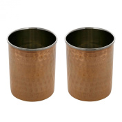 Indian drinking glasses set of two tumblers drinkware