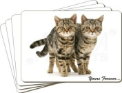 Tabby Cats Sentiment Leather Placemat New Gift Set, Ref:AC-171P