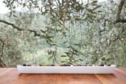 ASA Selection Grande Porcelain Olive Boat