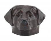 Quail Ceramics Chocolate Labrador Face Egg Cup