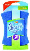 Clean Up Light Duty Scourer Pads, 2-Pack