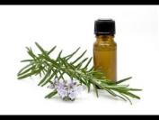 Cassia Essential Oil, 100% Pure 1.1 Oz/36 Ml