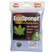 Pacific Dry Goods - Ecosponge Regular, 2 sponges