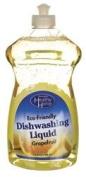 Eco-Friendly Dishwashing Liquid 25 fl oz (739 ml) Liquid