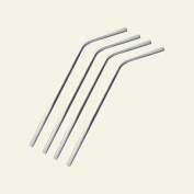 Metal Stainless Steel Drinking Straws - Set of 6