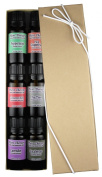 Essential oil sampler gift set in box (set #3). 6 Oils- Includes 100% Pure, Undiluted, Therapeutic Grade Essential Oils of Lavender, Eucalyptus, Cinnamon Bark, Peppermint, Tea Tree and Grapefruit. 10 ml each.