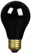 Thermal Spa Black Light 75 Watt Replacement Bulb