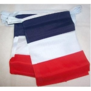 World of Flags 6m 20 flag France Bunting
