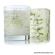 Thymes Poured Aromatic Candle, Eucalyptus,