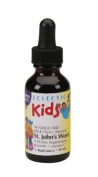 Eclectic Institute Inc St. John' s Wort Black Cherry Kid