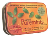 Meltzer's Puremints Puremints Ginger (5% Ging) Refill Pack for Stand