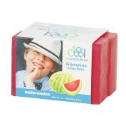 Watermelon Glycerine Soap Bars - Double Pack