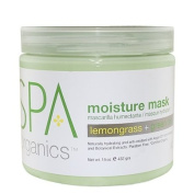 BCL Spa Lemongrass and Green Tea Moisture Masque