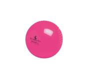 Readers Windball Practise Cricket Ball